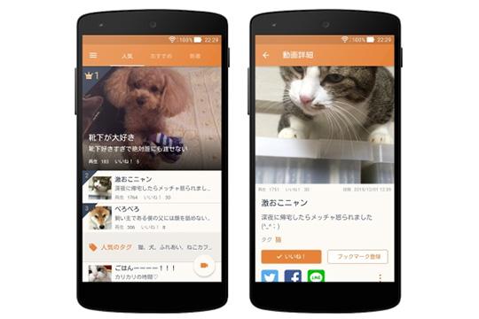 20151210-news-4