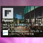 flipboard-ss0